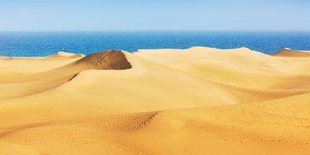Sanddynerne i Maspalomas