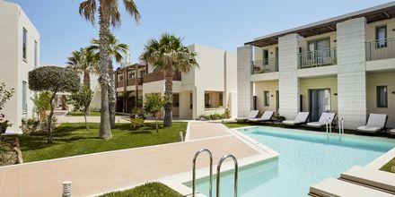Dobbeltværelse med delt pool på Grand Bay Beach Resort Giannoulis Hotels på Kreta, Grækenland.