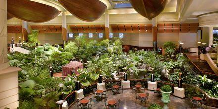 Restaurant Panini på Grand Hyatt i Bur Dubai, Dubai.
