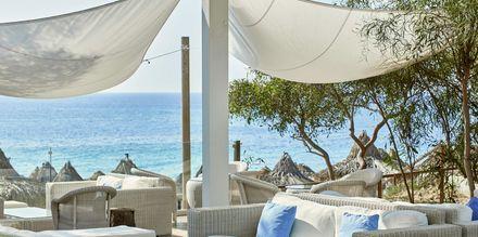 Loungebar på Hotel Grecian Bay, Cypern.