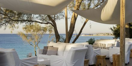 Loungebar på Hotel Grecian Sands, Cypern.