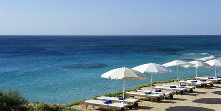Stranden ved Hotel Grecian Sands, Cypern.