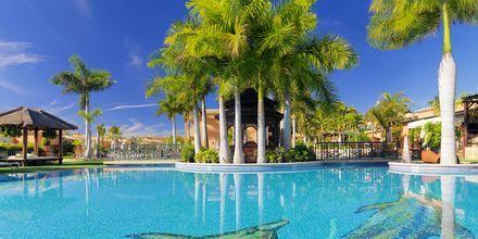 Poolområdet på hotel Green Garden Resort på Tenerife, De Kanariske Øer, Spanien.