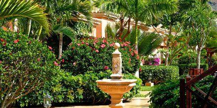 Haven på hotel Green Garden Resort på Tenerife, De Kanariske Øer, Spanien.