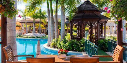 Poolbar på hotel Green Garden Resort på Tenerife, De Kanariske Øer, Spanien.