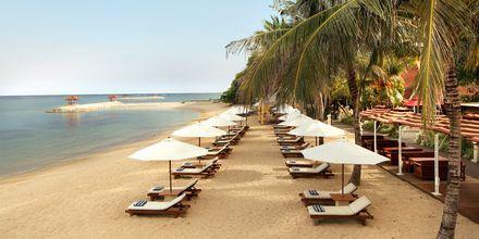 Stranden ved Hotel Griya Santrian på Bali, Indonesien.