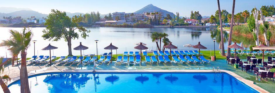 Poolområde på Hotel Grupotel Amapola på Mallorca, Spanien.