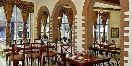Restaurant Al Basha på Hotel Habtoor Grand Resort Autograph Collection i Dubai