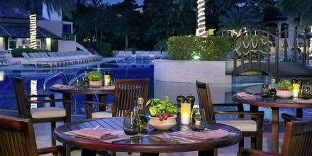 Restaurant Luciano på Hotel Habtoor Grand Resort Autograph Collection i Dubai