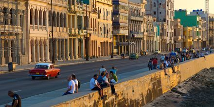 Strandpromenaden EL Malecon i Havana på Cuba.