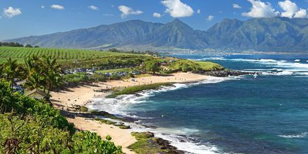 Hawaii lokker med vulkaner, hvide strande og fantastisk natur.