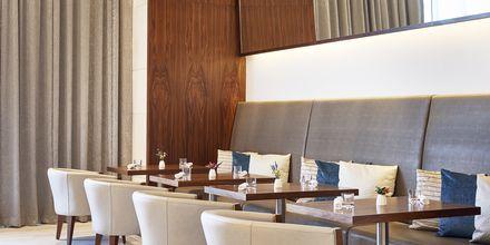 Restaurant The Cafe på Hilton Dubai al Habtoor City, Dubai.