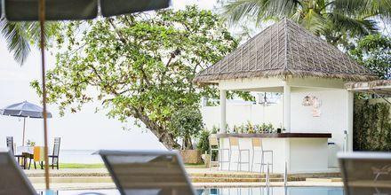 Poolbar på Hive Khaolak Beach Resort, Khao Lak