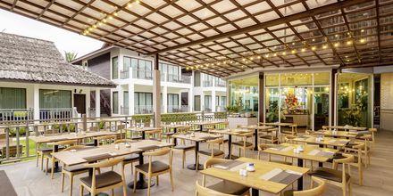 Cafe på Hive Khaolak Beach Resort, Khao Lak