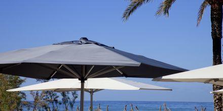 Stranden ved HM Tropical i Playa de Palma, Mallorca