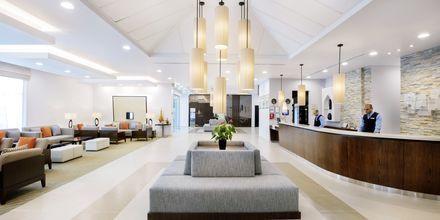 Lobby på Holiday Inn Express - Dubai Safa Park