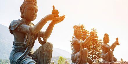 Statuer der tilbeder Tian Tan Buddha.