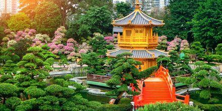Nan Lian Garden.