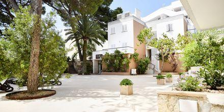 Houm Plaza Son Rigo i Playa de Palma, Mallorca.