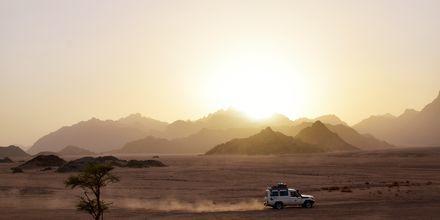 Jeep-tur gennem ørkenen i Hurghada,  Egypten.