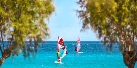 Windsurfing, Ialyssos & Ixia på Rhodos, Grækenland.