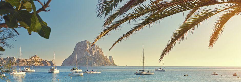 Ibiza, sydvest for Mallorca, er en frodig ø med meget at tilbyde.