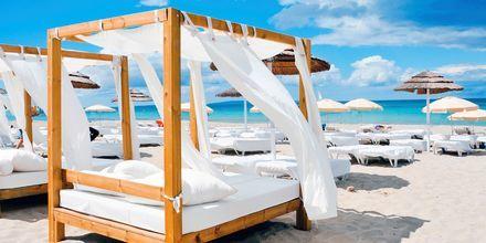 Ibiza er kendt for sine smukke strande, gode natteliv og skønne vand.