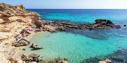 Tag på udflugt til nærliggende ø Formentera, hvor turkisblåt vand og hvide strande venter.