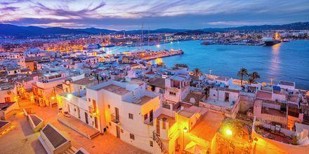 Ibizas havn i solnedgang.