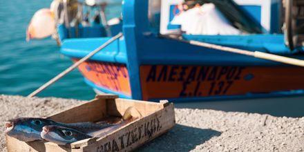 Ierapetra på Kreta.