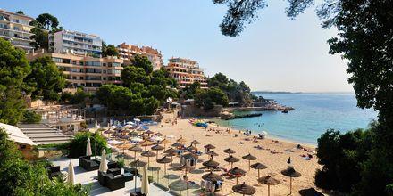 Strand i Illetas på Mallorca, Spanien.