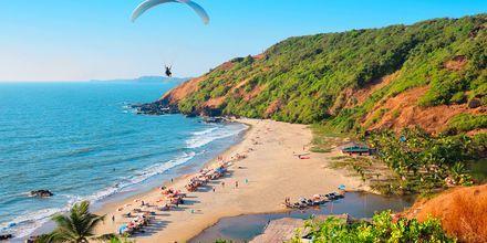 Strande i det nordlige Goa i Indien.