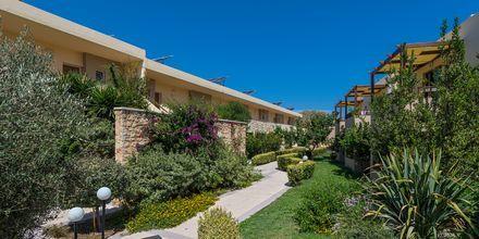 Hotel Indigo Mare på Kreta, Grækenland.