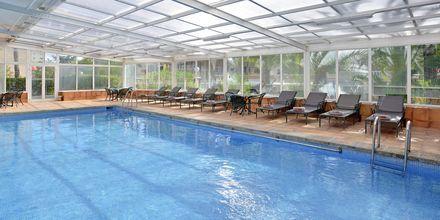 Indendørs pool på Hotel INNSiDE by Melia Cala Blanca.