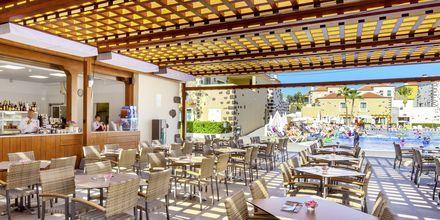 Poolbar på Hotel Isabel i Playa de las Americas, Tenerife