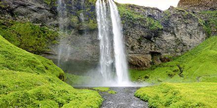 Seljandsfoss, Island