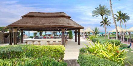 Captain's Bar og restaurant på Hotel JA Beach i Dubai, De Forenede Arabiske Emirater.