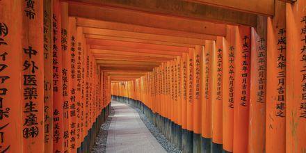 Fushimi Inari Shrine er en kendt seværdighed i Kyoto, Japan.