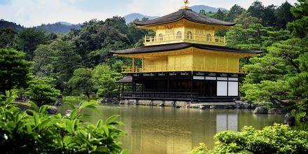 The Golden Pavilion er et kendt buddhist-tempel i Kyoto.