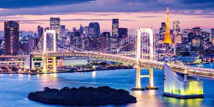 Japan er et fantastisk spændende land med Tokyo som hovedstad.