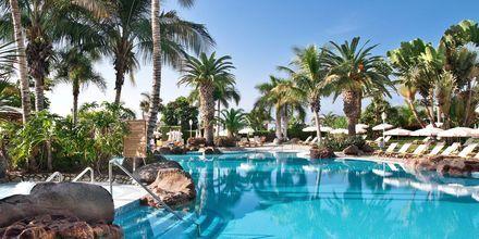 Poolområdet på hotel Jardines De Nivaria i Costa Adeje, Tenerife