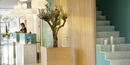 Reception på Hotel JS Palma Stay i Can Pastilla på Mallorca.