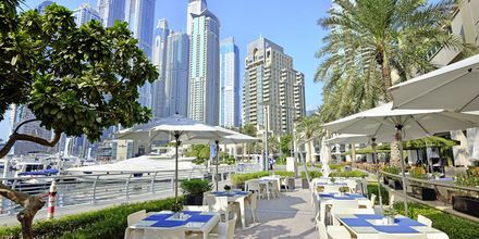 Dubai Marina i Jumeirah Beach, De Forenede Arabiske Emirater.