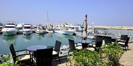 Dubai Jumeirah Beach, De Forenede Arabiske Emirater.
