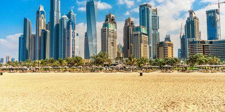 Strand i Dubai Jumeirah Beach, De Forenede Arabiske Emirater.