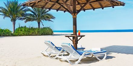 Jumeirah Beach & Dubai Marina