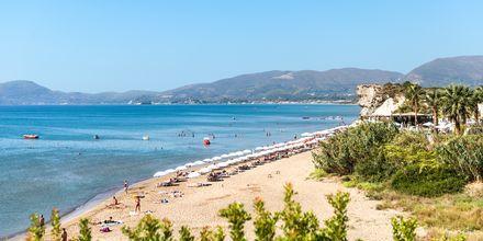 Stranden i Kalamaki på Zakynthos, Grækenland.