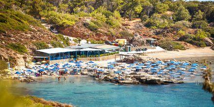 Tasos beach på Rhodos, Grækenland.