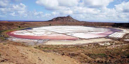 På udflugt til Pedra Lumes kan man bade i søer med 26% saltindhold.