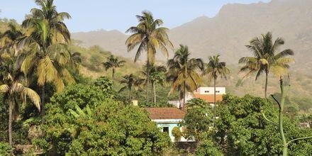 By på den frodige ø Santiago, Kap Verde.